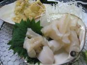 イカの刺身、ヤリイカソーメン、イカゲソの唐揚げ、ヤリイカ、アオリイカの一匹丸ごと料理