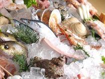 毎日仕入れる新鮮な魚介類の数々