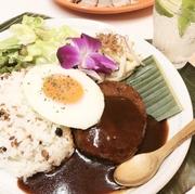 Cilantro & Chicken Vietnamese Spring Rolls
