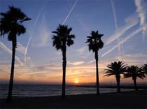 セントレア名物、飛行機雲が描く美しい夕暮れを眺めながら