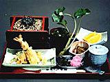 Washokudokorokanohonjin