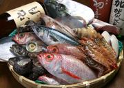 旬の魚と地酒が楽しめる店。地元のお客様はもちろん、観光や出張のお客様も数多くいらっしゃいます。