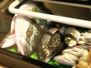 能登の冬の定番であるブリと鱈。この2つの魚を使って楽しむ贅沢なしゃぶしゃぶです。白子の濃厚なクリーミーさと、脂がのったぶりの旨さは、贅を尽くした最高の逸品といえます。