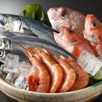 三島で獲れた新鮮魚介類