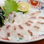 活きのよさをそのまま味わえる『天然鳴門鯛湯引き造り』