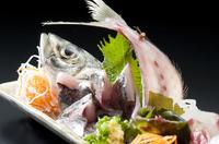 直送!朝一に水揚げされた旬の地魚をご提供します。