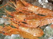 北海道産 蝦夷あわびを使用。 蝦夷あわびは、身がしまり、味が濃いのが特徴です。 大きさによって価格が変更になりますので係りの者にお尋ねください。