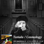 Tamala Cosmology