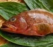 白身の魚としては最高ランク。 コリコリしていてさっぱりとした上品な旨みを味わえます。