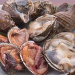 殻つきの貝類は通年置いていますが、春が一番おいしいです