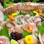 コースは旬の約30種以上ございます。旬魚のコースと大小7室の個室で美味しい時間を!