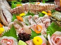旬のお刺身・天ぷらと約30の旬のコースで美味しい時間を!