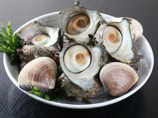房総の貝類は鮮度も味も最高。どこにも負けない自慢の食材です。