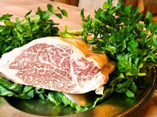 お肉料理はサシが魅力の上州牛を中心に、お魚は新鮮食材厳選