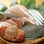 江戸前の鮨で贅沢なお食事会を。食材は最適な鮮度です。