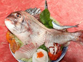 「鯖の刺身を生まれて初めて食べた」