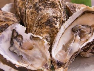 名産地の食べ比べに、好みのスタイルで調理できる『殻付きカキ』