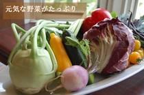 大皿料理セット 3800円・4800円・5800円