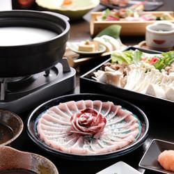 豆乳しゃぶしゃぶが【イベリコ豚ベジョータロース】or【天然鮮魚】の2種類から選べる豪華コース!