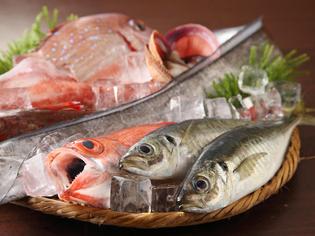 相模湾で揚がった地魚などを、創業70年の目利きで厳選します