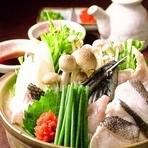 くえ鍋 【幻の高級魚】 ハタ科の中で最も美味しい極上品