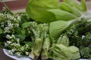 浜松北部は山菜の宝庫で、たらの芽、ふきのとう、うど、こごみ…等の山の幸が採れます。