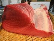 小魚を追って海を疾走する肉食魚で、関西などで珍重される。冬から初夏に素晴らしいものが入荷してくる。