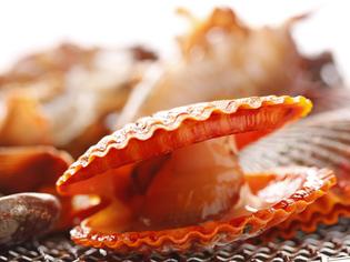 高知・地元天然の旬の魚介類をごゆっくりとご堪能ください。