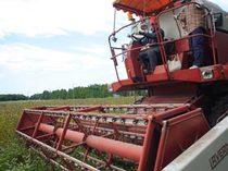 大きなコンバインで収穫!