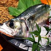 博多では、サバは生で食すのが定番です!