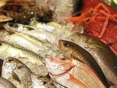 船から直送の自慢の鮮魚。仕入れによって毎日替わる漁師料理あり