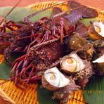 サンマは美味いし伊勢エビも解禁。トロール漁深海魚をゲットだぜ