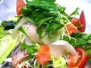 新鮮な魚たっぷりのサラダ。ヘルシーですね~