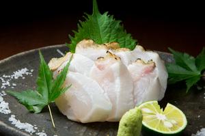 力士も太鼓判を押す博多ならではの高級魚が、一年中楽しめる『あら炙り』