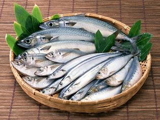 長崎近海の鮮魚をメインに季節に応じた旬の味を提供