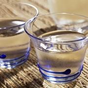 ●カシ酒 ●カルピ酒 ●グレープフルー酒