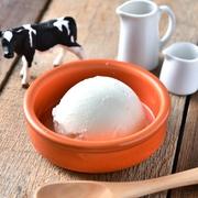 北海道の生乳を使用したバニラアイスクリーム 濃厚なのに口どけの良い上品な味わいに仕上げました!  濃厚バニラアイス