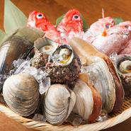 日間賀島をはじめ全国の漁師や漁港から直送の天然物の魚介にこだわっています。刺身を中心に、塩焼きから煮付け、揚げ物、酒蒸しまで幅広い調理方法で提供。