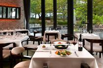 窓の外に広がる緑豊かなガーデンを見ながら、優雅に食事