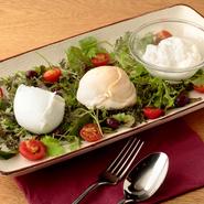 イタリアから空輸したDOP認定フレッシュ・モッツァレラチーズ、クラシカ、アッフミカータ、ストラッチャテッラの3種類。ミルク本来の甘さと適度な塩分に加え、弾力のある歯応えとジューシーさが特徴です。