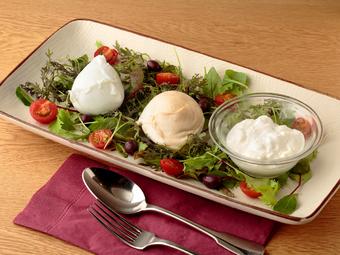 人気のトリュフ ピッツァなどオービカがおすすめするお料理をセレクトしたプランです。