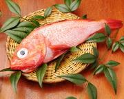 高級魚のきんき。煮魚・焼魚どちらも美味しくお召し上がり頂けます。