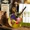 味も香りも見た目も楽しい『ボタニカルガーデン/BOTANICAL GARDEN』