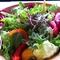 十種の彩りサラダ