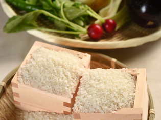 産地直送! 滋賀県湖南市産の旬の近江米と、新鮮な地場野菜