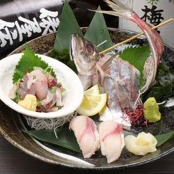 一番人気のコース。お刺身3種、煮付け、海鮮ホイル焼き、釜飯などが付いた充実の全9品!