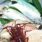 【ゆずほのか】の魚介は毎日入荷する産地直送の新鮮魚介!