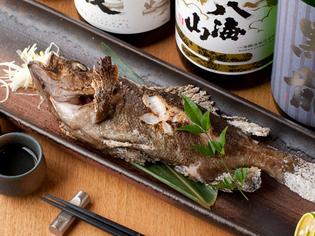 日本全国の新鮮な魚介を堪能