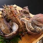 黒鮑は、佐渡の漁師からの直送品を中心に、肉厚で良い品をご用意。半分お造りに、半分バター焼きにもできる大きめのサイズです。島根県浜田市より、現地で【はせ川】用に厳選されたのどぐろが年間を通して届きます。