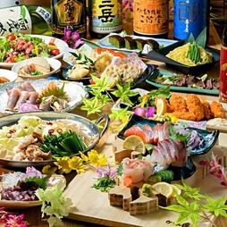 ◇鮮魚・馬刺し・鶏のタタキの豪華5種盛とふぐの天麩羅、カキフライ、和牛の炙りユッケ等11品のコース!